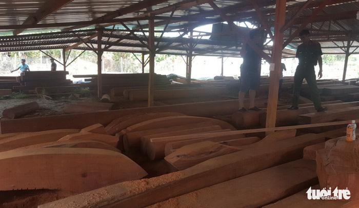 Phượng 'râu' gom gỗ quý chuẩn bị làm biệt thự khủng - Ảnh 3.